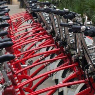Почему от велосипеда болят колениПочему от велосипеда болят колени